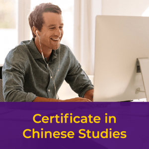 Student at computer - Certificate in Chinese Studies